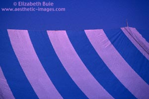 Tent stripes at morning (copyright Elizabeth Buie)