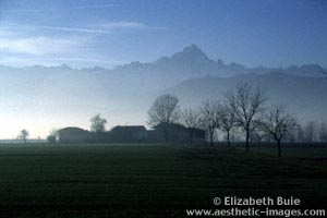 Piemontese farm at foot of Alps (copyright Elizabeth Buie)