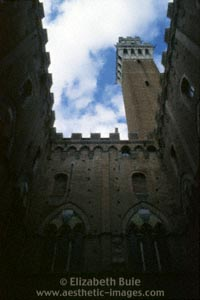 Tower and interior of courtyard, Palazzo Pubblico, Siena (copyright Elizabeth Buie)