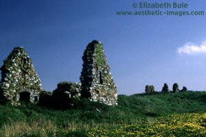 Ruins at Finlaggan, seat of the Lords of the Isles (copyright Elizabeth Buie)